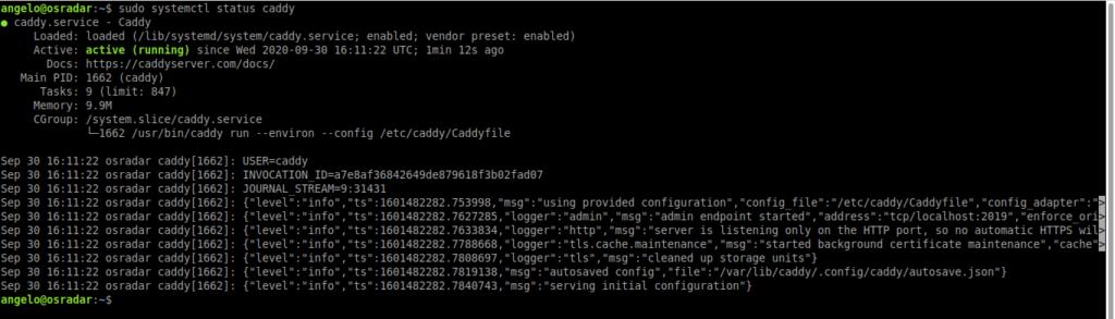 如何在Ubuntu 20.04上安装Caddy服务器-VPS排行榜